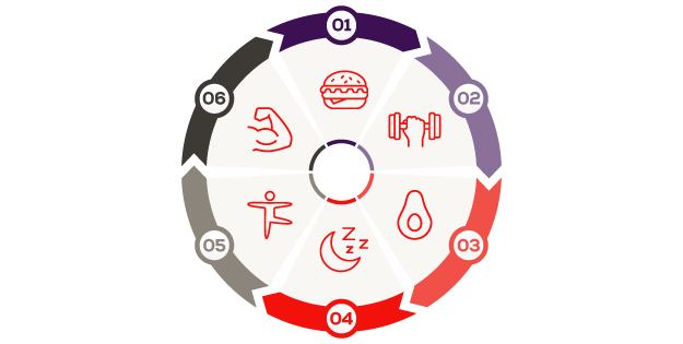 The athletes food infographic - wheel
